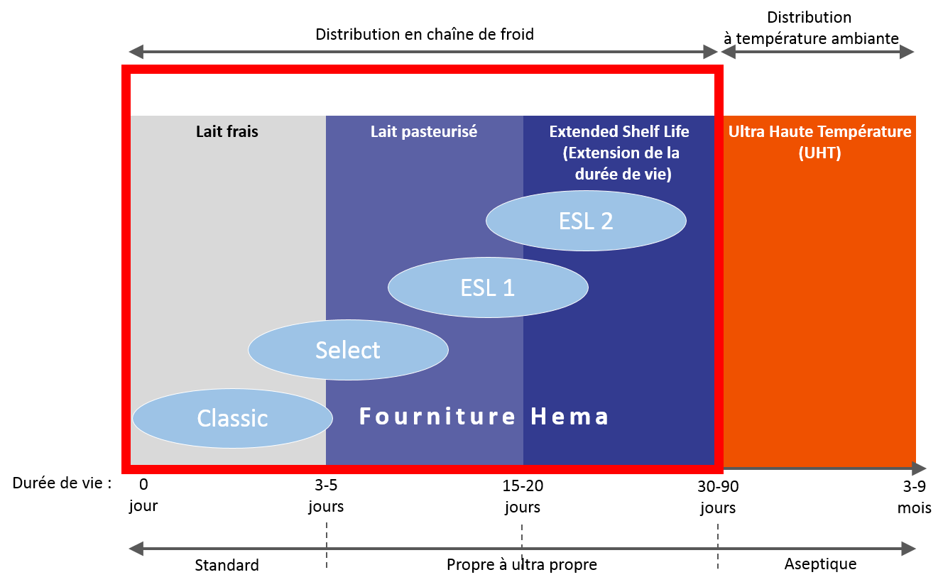 ESL chart hema filling and capping features